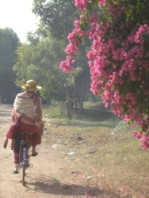 Hooray for bicycles in Bagan!