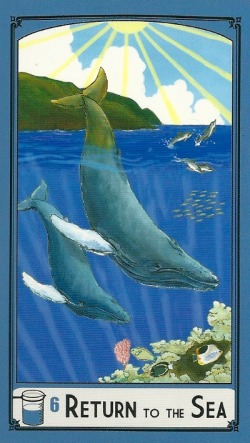 6 of Cups - Return to the Sea - Science Tarot