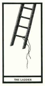 The Ladder - The Fantod Pack by Edward Gorey