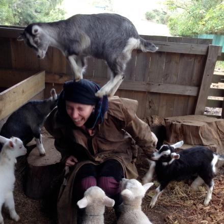 Psychic Sarah & Baby Goats 4
