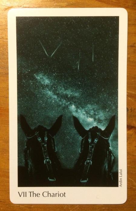 The Chariot - The Elora Tarot Project ~ artist Ardin Lalui.jpg