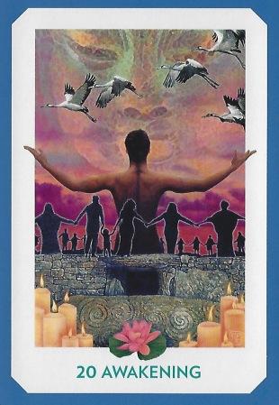 Awakening - Gaian Tarot by Joanna Powell Colbert.jpeg